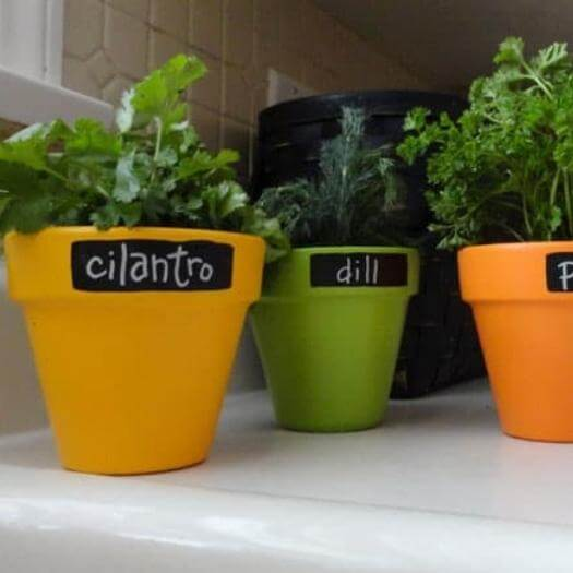 Chalkboard Herb Pots Easy Last Minute Mothers Day DIY Homemade Crafting Gift Ideas Inspiration How To Make Tutorials Recipes Gifts To Make