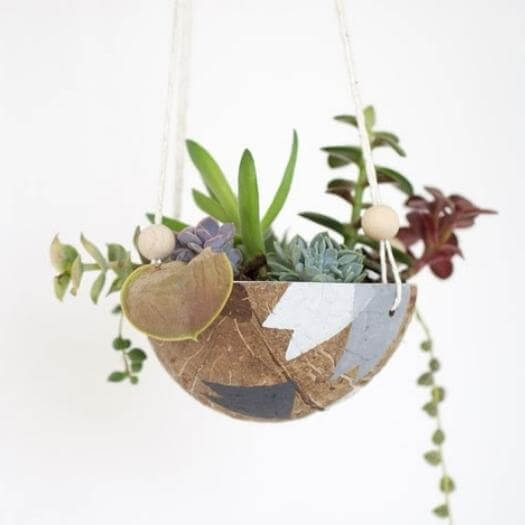 Coconut Planter Grandma Mothers Day DIY Homemade Crafting Gift Ideas Inspiration How To Make Tutorials Recipes Gifts To Make