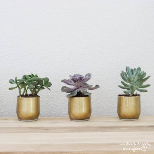 Gold Succulent Vases Best Friend Mothers Day DIY Homemade Crafting Gift Ideas Inspiration How To Make Tutorials Recipes Gifts To Make