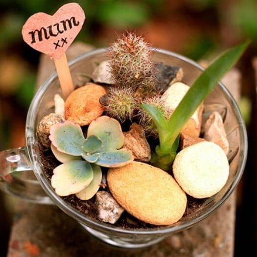 Mini Succulent Garden Best Mothers Day DIY Homemade Crafting Gift Ideas Inspiration How To Make Tutorials Recipes Gifts To Make