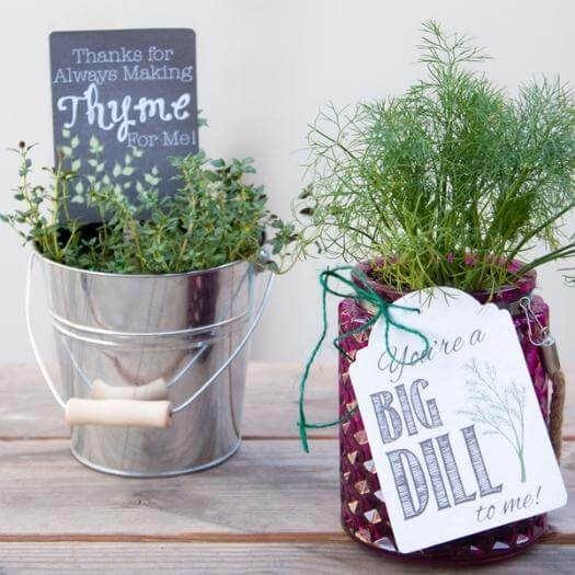 Potted Herbs Easy Last Minute Mothers Day DIY Homemade Crafting Gift Ideas Inspiration How To Make Tutorials Recipes Gifts To Make