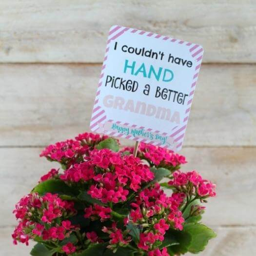 Printable Hand Tag Cheap Affordable Mothers Day DIY Homemade Crafting Gift Ideas Inspiration How To Make Tutorials Recipes Gifts To Make