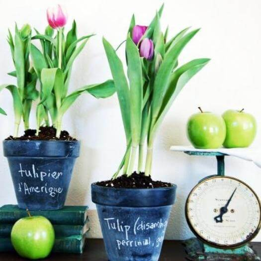 Spring Chalkboard Pots Best Friend Mothers Day DIY Homemade Crafting Gift Ideas Inspiration How To Make Tutorials Recipes Gifts To Make